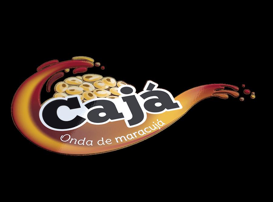 Logo logotipo caja design branding